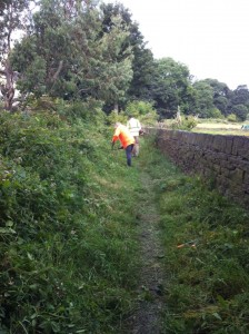 Bridleways clearance Aug 16 c