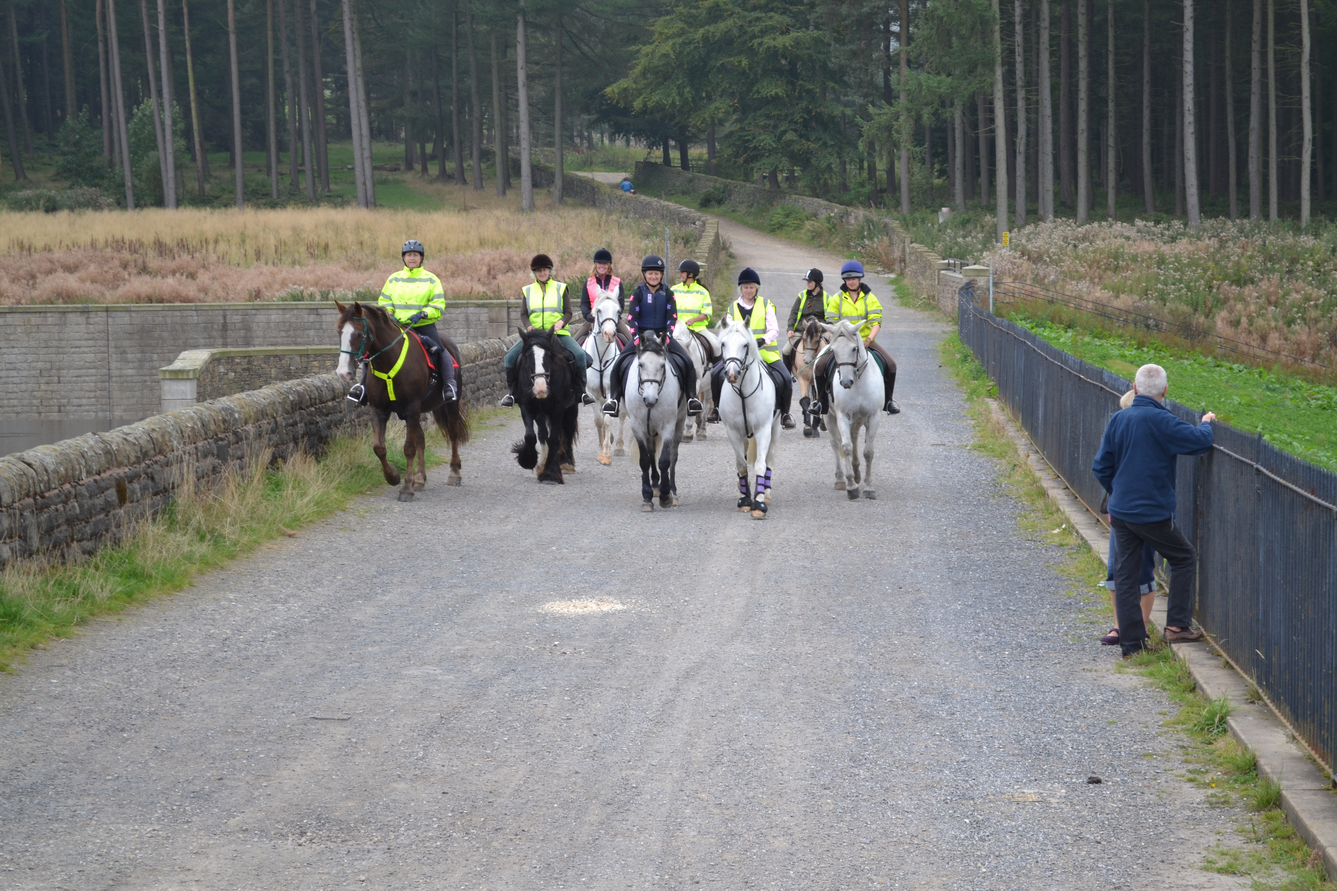 <div class='slider_caption'> <h1>Kirklees Bridleways Group</h1> <a class='slider-readmore' href='http://kirkleesbridlewaysgroup.co.uk/about/'>Our main aim is to protect and improve our bridleways network.</a> </div>